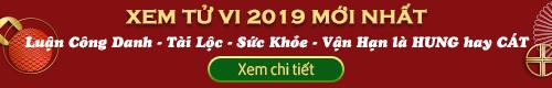 Xem tử vi 2019 của 12 con giáp, xem tử vi chính xác tại phongthuyso.vn